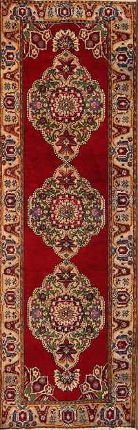 4x11 Anatolian Turkish Oriental Rug Runner