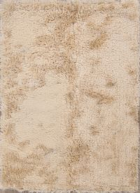 4x6 Tufted Shaggy Shag Oriental Area Rug