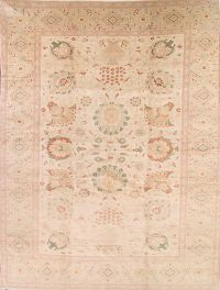 Vegetable Dye 12x17 Oushak Ziegler Egyptian Oriental Area Rug