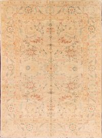 8x10 Ziegler Oushak Egyption Oriental Area Rug