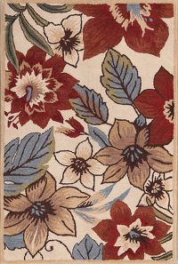 Transitional Floral  Oushak Oriental Area Rug