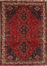 7x9 Abadeh Persian Area Rug