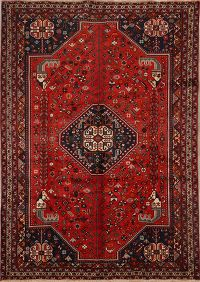 7x10 Abadeh Persian Area Rug