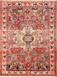 Decorative Floral 3x5 Lori Shiraz Persian Area Rug