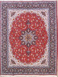 Floral Soft Plush 10x13 Najafabad Persian Area Rug