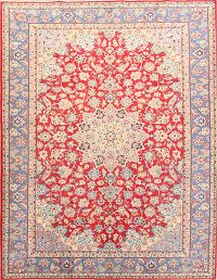 Floral 8x11 Najafabad Persian Area Rug