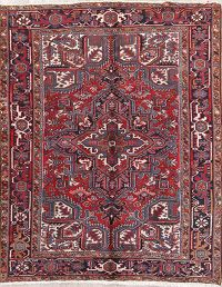 Geometric 6x8 Heriz Persian Area Rug