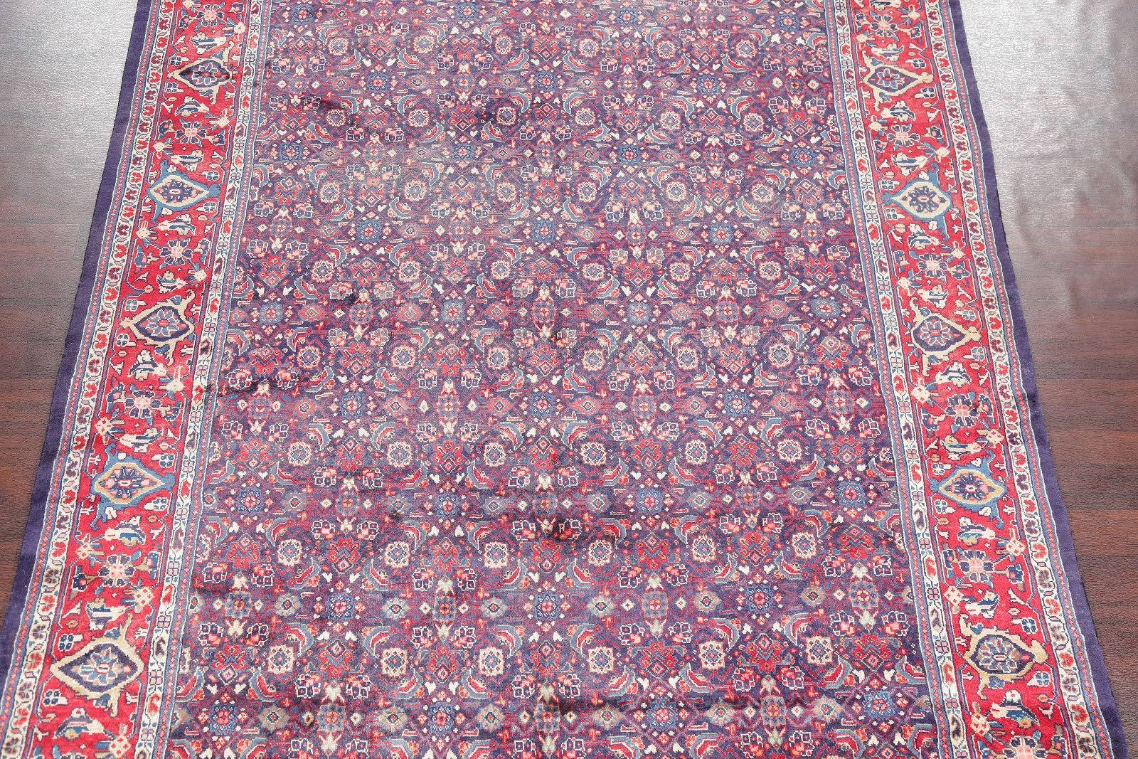 All-Over Floral Blue 8x12 Sarouk Persian Area Rug