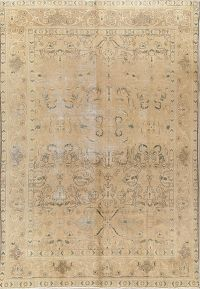 All-Over Muted Color 8x11 Tabriz Persian Area Rug