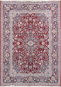Soft Floral Tabriz Persian Area Rug 8x11