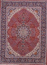 Soft Pile Floral Hamedan Persian Style Area Rug 10x12