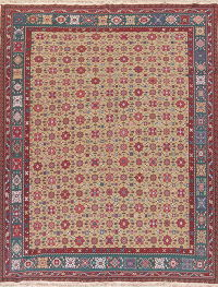 Floral Brown Sumak Turkish Oriental Hand-Woven Area Rug Wool 9x12